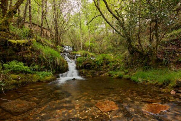 Naturaleza-salvaje-galicia